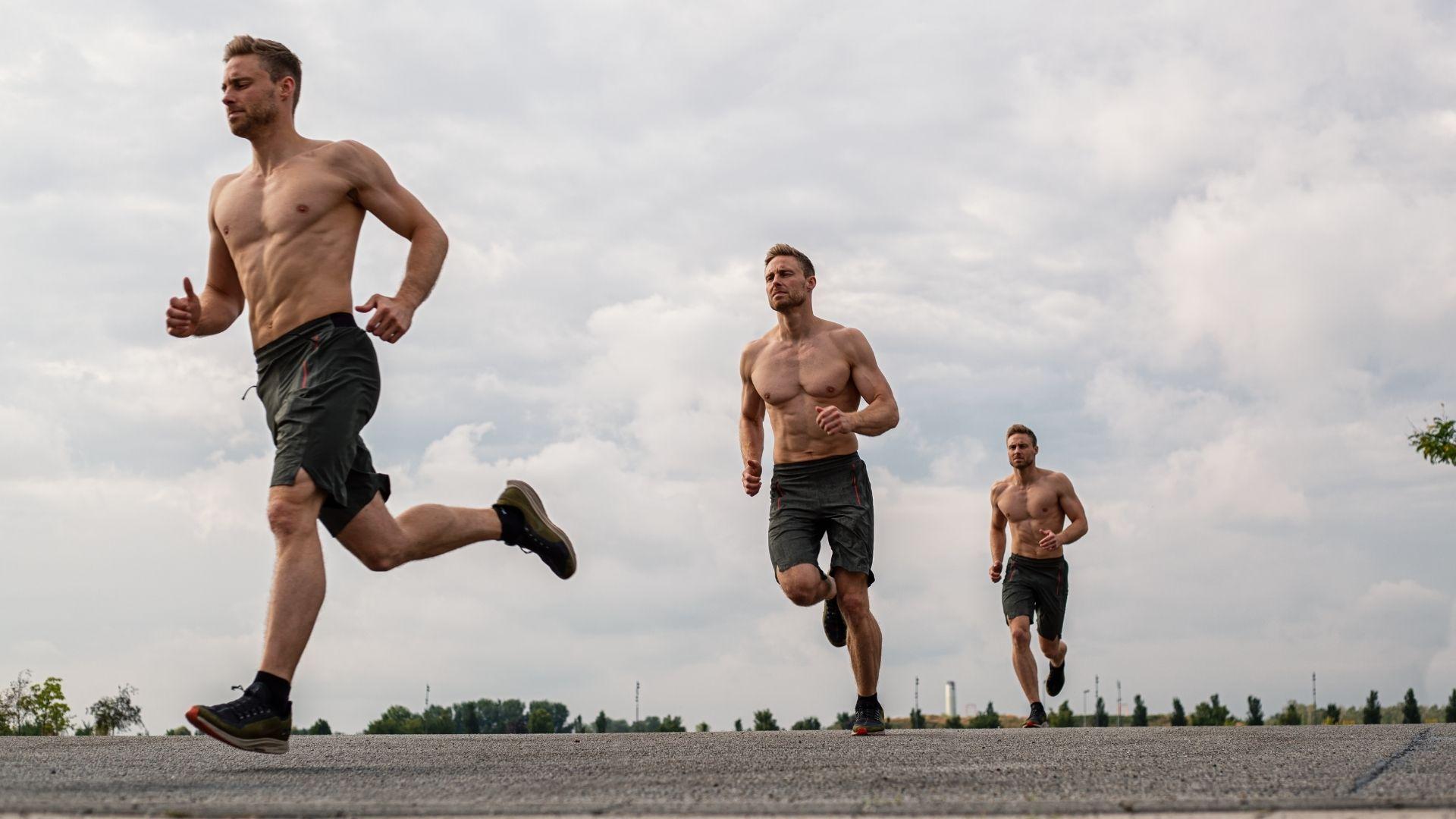 Gesetz der Minimalkonstanz - Training