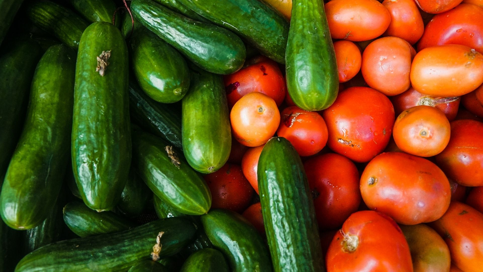 02 Wasserreiche Lebensmittel - Gemüse mit hohem Wasseranteil