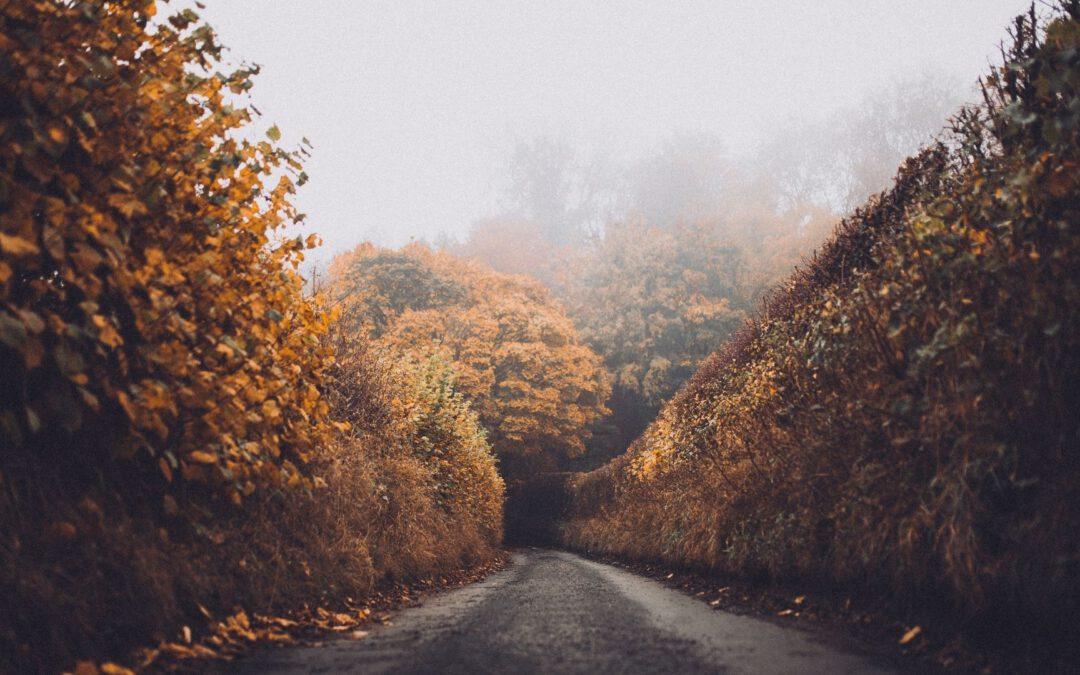 15 Tipps gegen den Herbstblues – So machst du das Beste aus dem Herbst