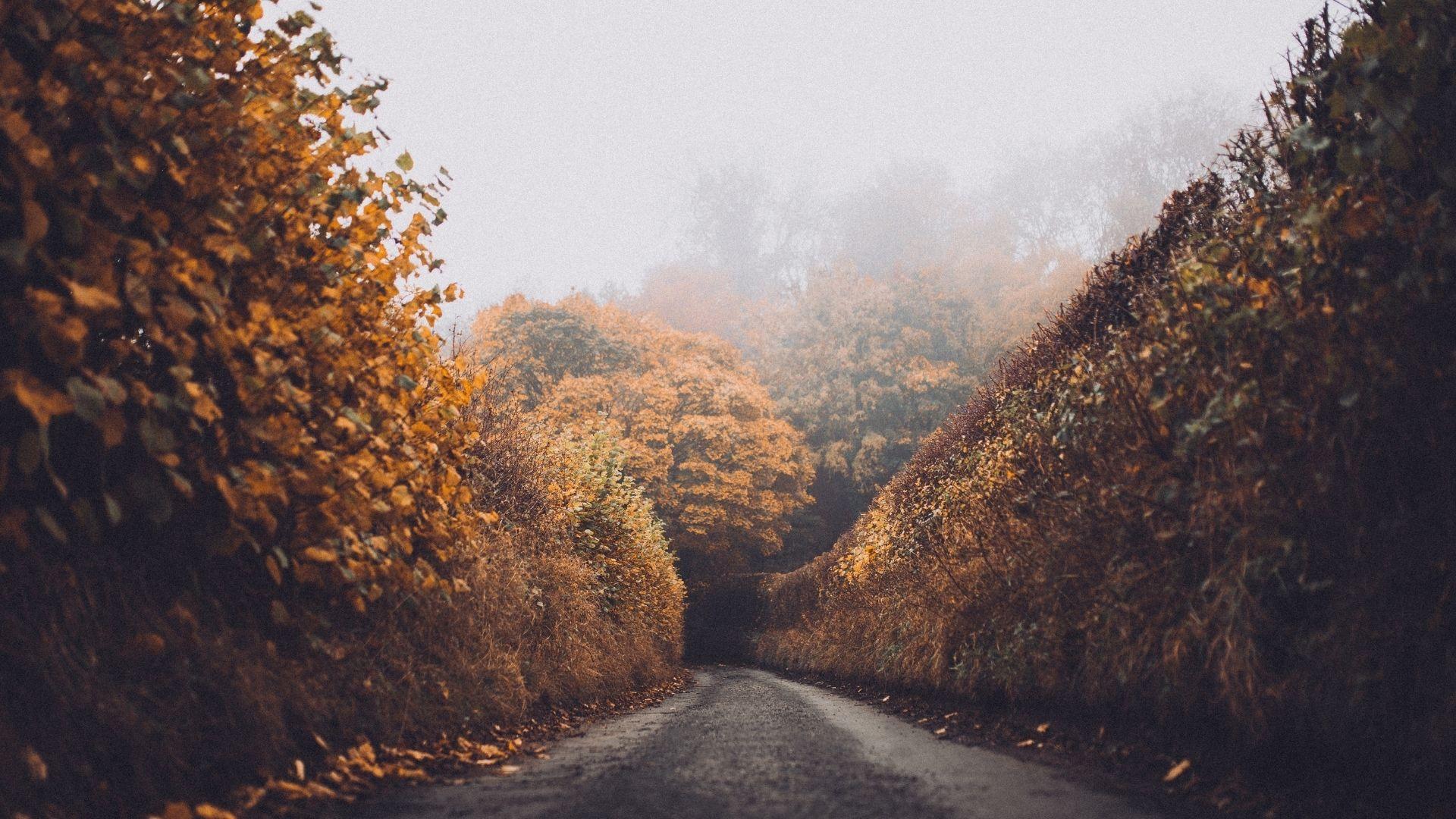 01 Herbstblues - ©www.canva.com